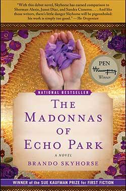 The Madonnas of Echo Park book cover